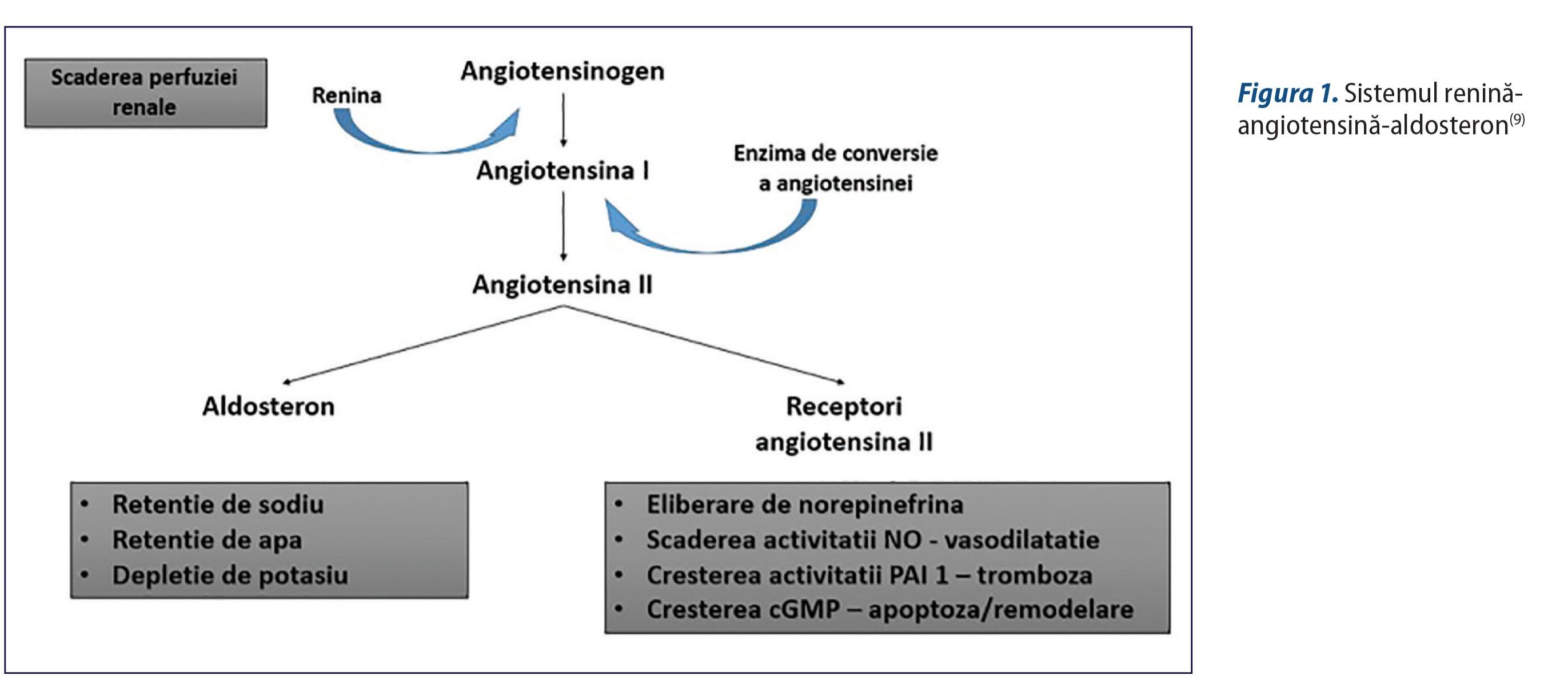 Imagini pentru inhibitorii enzimei de conversie