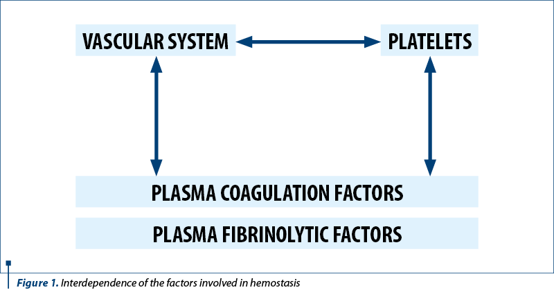 Figure 1. Interdependence of the factors involved in hemostasis